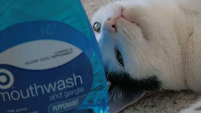 Mouthwash Ingredients